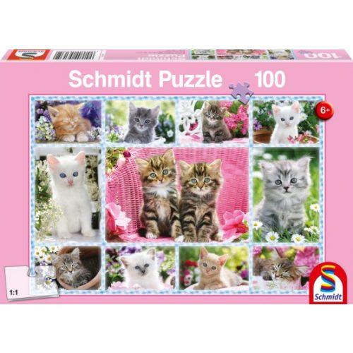 Kittens, 100 db (56135)