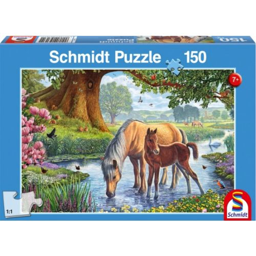 Horses by the stream, 150 db (56161)