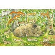 Animal family, 3x48 db (56222)