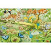 Tiere im Regenwald, 100 db (56250)