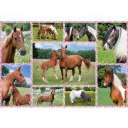 Pferdeträume, 150 db (56269)