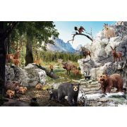 The animals of the forest, 40 db (56239)