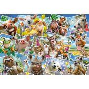 Animal Selfies, 200 db (56294)