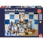 Katzen in der Küche, 500 db (58370)