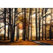 Magical forest, 1000 pcs (58396)