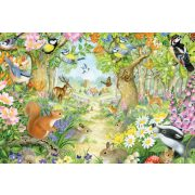 Animals in the forest, 100 db (56370)
